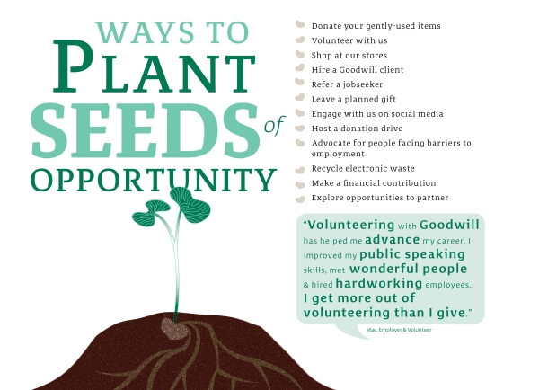 Plant-Seeds-of-opportunity-3